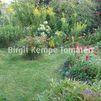 Gartengestaltung_07