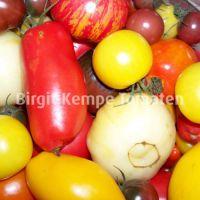 Tomatenvielfalt_2